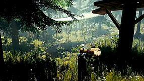 The Forest zwiastun na premierę