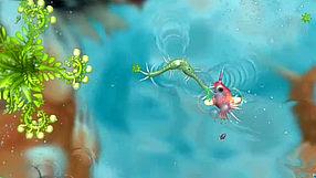 Spore fazy rozwoju - mikroorganizmy