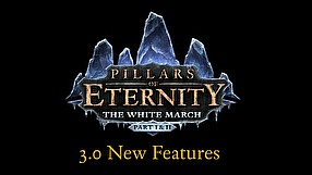 Pillars of Eternity update 3.0