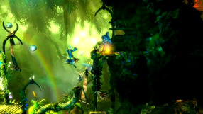 Trine 2: Complete Story Co-op