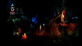 Trine: Enchanted Edition Etap 10 - Shadowthron Thicket cz.2