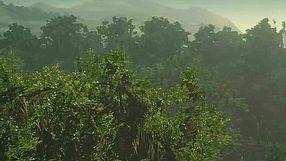 Hitman 2 kolumbijski las deszczowy