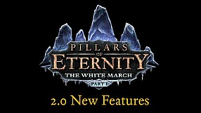 Pillars of Eternity update 2.0