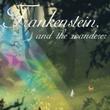 game The Wanderer: Frankenstein's Creature