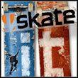 game Skate It