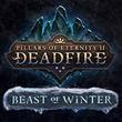game Pillars of Eternity II: Deadfire - Beast Of Winter