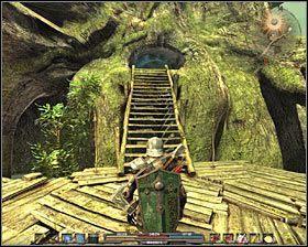 Kieruj się na południe, a po kilku chwilach znajdziesz się w Czarnej Toni (obszaru wokół wielkiego drzewa, czyli Tooshoo) (M7A, 2)(M7B, 1) - Bagna (1) - Zadania główne - Arcania: Gothic 4 - poradnik do gry