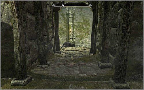 Po znalezieniu się wewnątrz fortu udaj się na wschód, ale uważaj żeby nie wejść na odnalezione po drodze sidła na niedźwiedzie (powyższy screen) - Zlecenie- Zabij Agnis   Zadania Mrocznego Bractwa - The Elder Scrolls V: Skyrim - poradnik, mapy, questy