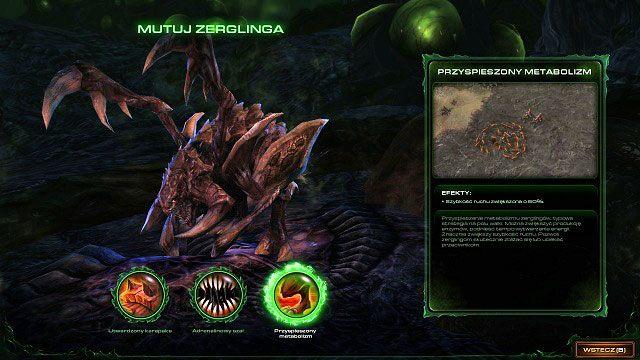 Zanim rozpoczniemy misję powinniśmy odwiedzić jamę ewolucyjna na pokładzie Lewiatana i wybrać jedną z trzech dostępnych dla zerglingów mutacji - Dominacja - Kampania - Char - StarCraft II: Heart of the Swarm - poradnik do gry