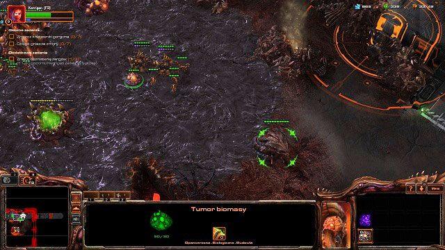 Jak zawsze rozpoczynamy misję od przydzielenia robotnic do pól minerałów oraz zbudowania ekstraktora wespanu i obsadzenia go zbieraczami - Ogień na niebie - Kampania - Char - StarCraft II: Heart of the Swarm - poradnik do gry