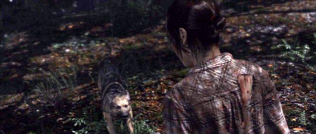 Podczas walki z psami musisz bardzo szybko wykonywać pojawiające się na ekranie polecenia - Ścigana - Solucja - Beyond: Dwie Dusze - poradnik do gry