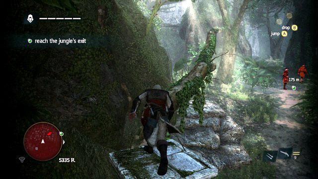 Drzewo, z którego łatwo zabijesz następną dwójkę - 07 - A Single Madman | Sekwencja 3 - Assassins Creed IV: Black Flag - poradnik do gry