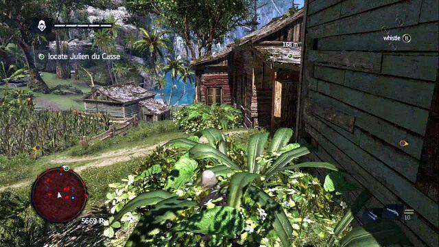 Wykorzystaj ogród, bo ominąć główną część osady - 07 - A Single Madman | Sekwencja 3 - Assassins Creed IV: Black Flag - poradnik do gry