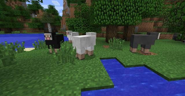 Owce - Pierwszy dzień - Jak przeżyć - poradnik surwiwalu - Minecraft - poradnik do gry