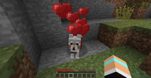 42a9f0cc2 Pies - Jak oswoić psa,kota - Porady ogólne - Minecraft - poradnik do gry