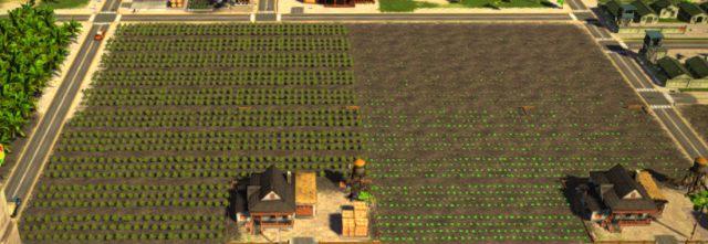 Farmy mają teraz wyznaczony obszar - 3. Zarabianie pieniędzy - Tropico 5 w 10 prostych krokach