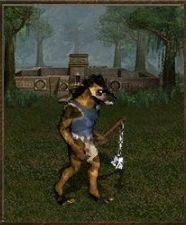 Atak: 3 - Cytadela - Jednostki - Heroes of Might & Magic III: HD Edition - poradnik do gry
