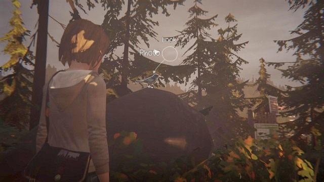 Przedostatnie zdjęcie znajdziesz w momencie, kiedy uciekniesz z Chloe z domu - Zdjęcia | Epizod 1 - Chrysalis - Life is Strange - poradnik do gry