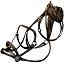 Siodła - Rodzaje zrzutów | Mapa świata, zrzuty i bossowie - ARK: Survival Evolved - poradnik do gry
