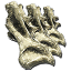 Sauropod Vertebra x2 - Mapa świata i bossowie | Mapa świata, zrzuty i bossowie - ARK: Survival Evolved - poradnik do gry