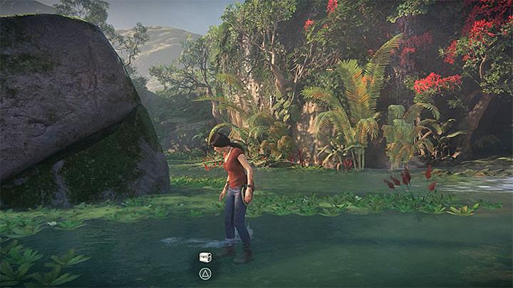 Po zrobieniu zdjęcia możesz przepędzić flamingi i zbadać dokładniej lokację, w której przebywały - 3 - Powrót do korzeni | Opis przejścia - Uncharted: Zaginione Dziedzictwo - poradnik do gry