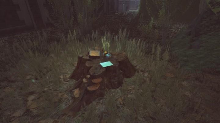 Znajdziesz tutaj wiadomość od Amandy, maskę oraz ubrania - Ogród posiadłości Yelvertonów - solucja Lust for Darkness - Lust for Darkness - poradnik do gry