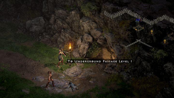 Вы отправляетесь в Лес Мрака только с одной целью: найти Древо Инфуса - Diablo 2 Resurrected: In Search of Cain - прохождение, прохождение - Diablo 2 Resurrected - игра