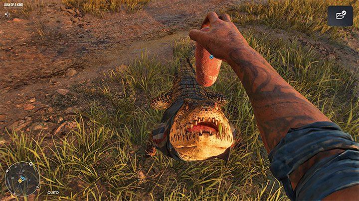 Как разблокировать: питомец Гуапо - Far Cry 6: трофеи / достижения - список - руководство по игре Far Cry 6