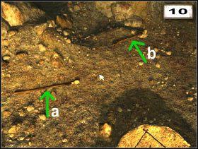 a - Torch (#14 ) b - Torch (#15 ) - Przedmioty - Druga jaskinia - Secret of the Lost Cavern: Tajemnica Zaginionej Jaskini - poradnik do gry