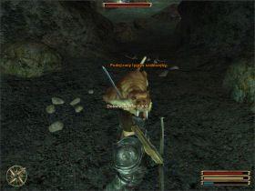 Twoim zadaniem jest zbadanie pobliskiej jaskini - Trelis (2) - Questy - Gothic 3 - poradnik do gry