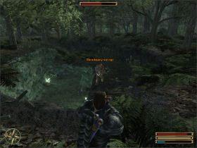 Twoim zadaniem jest zniszczenie grupy Ogrów zamieszkujących pobliską jaskinię - Trelis (2) - Questy - Gothic 3 - poradnik do gry