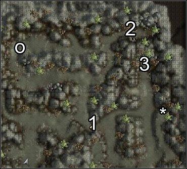 UWAGA: W miejscu oznaczonym (*) spotkasz gnoma Guyvena - koniecznie porozmawiaj z nim - Studnia Starej Sowy (1) - Akt 1 - Neverwinter Nights 2 - poradnik do gry