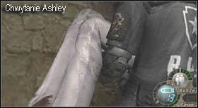 14 - Village (2-1) - kościół i spotkanie Ashley - Resident Evil 4 - PC - poradnik do gry