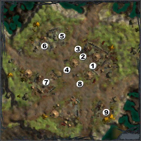 Obozowisko - Mapy - Help the Survivors of Silverfall - Silverfall - poradnik do gry
