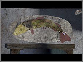 A ponieważ jakowegoś suma Olaf widział w gospodzie, tam też się udaje i uważnie przygląda rybce wiszącej nad drzwiami od kuchni (zbliżenie) - Zdobyć łuskę białego suma - Wioska - Zaginiona historia: Tale of Hero - poradnik do gry