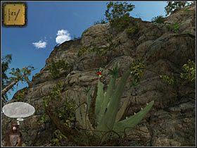 Na skale rośnie kaktus, jednak nie sposób się do niego dostać, bo drogę zagradzają cierniste krzaki - Rozdział trzeci (2) - Opis przejścia - Return to Mysterious Island 2 - poradnik do gry