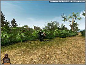 8 - Rozdział trzeci (1) - Opis przejścia - Return to Mysterious Island 2 - poradnik do gry