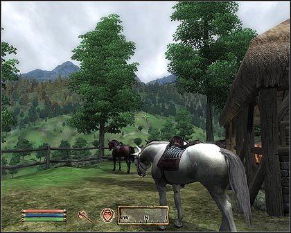 Kontrowersje wokół zbroi dla konia w The Elder Scrolls IV: Oblivion