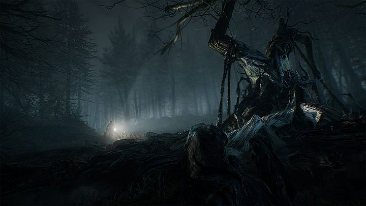 Alan Wake did in Poland. - Blair Witch lasts for 5-6 hours at a time - message - 25/08/2019