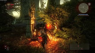 The Witcher 2: Assassins of Kings id = 209354