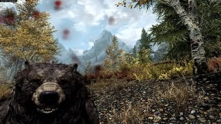 The Elder Scrolls V: Skyrim id = 225230