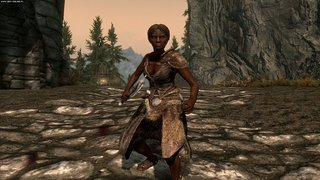 The Elder Scrolls V: Skyrim id = 225236