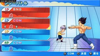 Dragon Ball Z: Tenkaichi Tag Team id = 194027