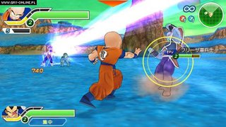Dragon Ball Z: Tenkaichi Tag Team id = 194043