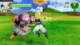 Dragon Ball Z: Tenkaichi Tag Team id = 194056