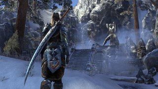 The Elder Scrolls Online: Tamriel Unlimited id = 308899