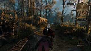 The Witcher 3: Wild Hunt id = 299257