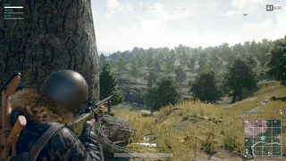 Playerunknown's Battlegrounds id = 341890