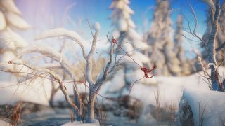 Unravel id = 315630