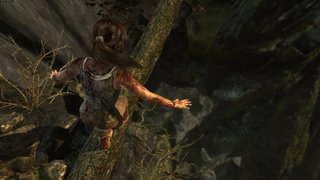 Tomb Raider id = 256631